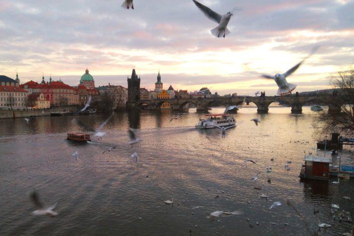 Šta Beograd može naučiti od Praga?