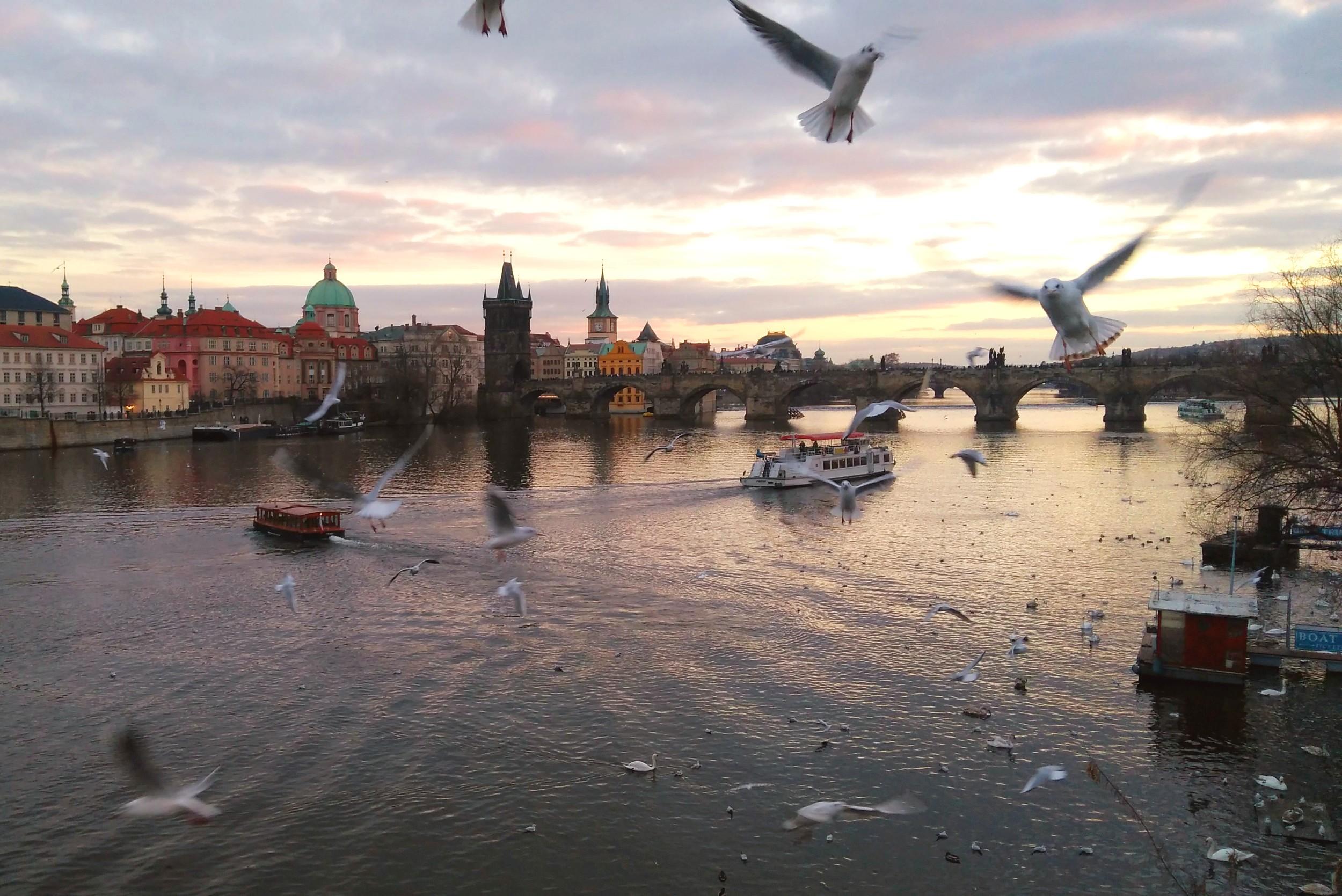 Поглед на Карлов мост (Фото: Радомир Јовановић)