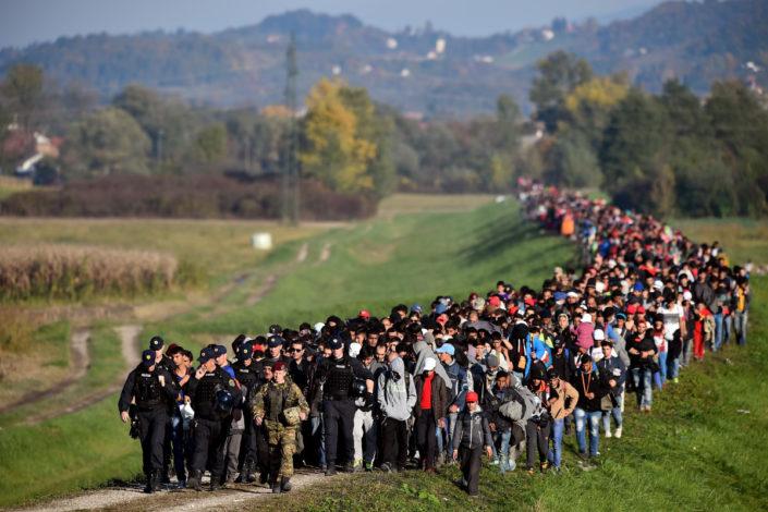 Migranti i Bakirova demografska računica