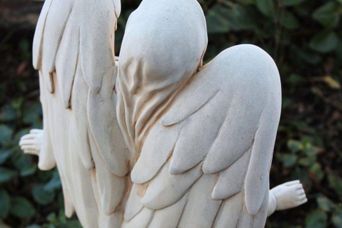 Bela krila