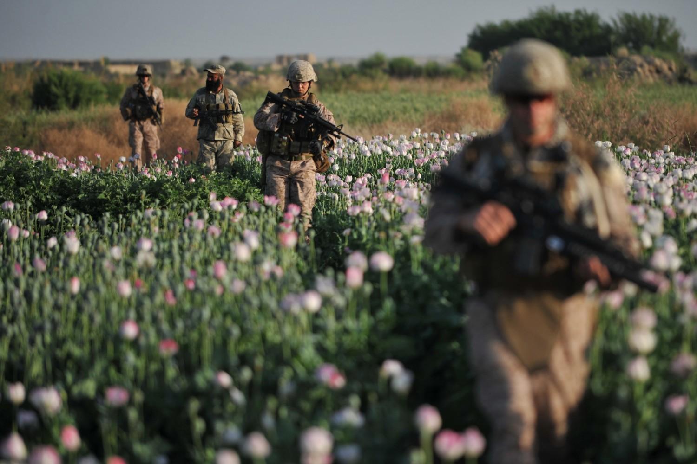 Američki marinci u prolasku kroz polje maka u jednom selu u provinciji Helman (Avganistan), 25. april 2011. (Foto: Bay Ismoyo/AFP via Getty Images)